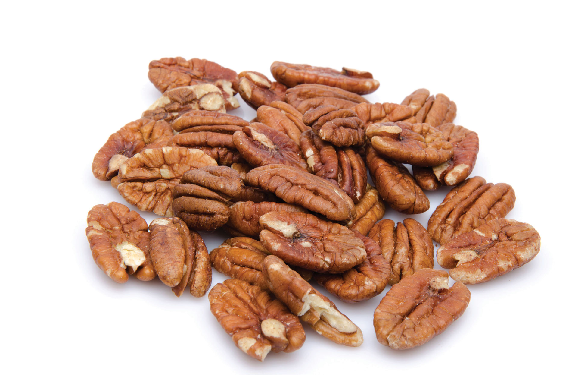 Pasha Dried Fruit and Nuts – Middle Eastern Produce at Its Best